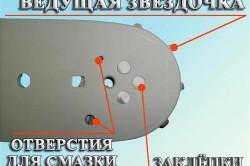 Расположение ведущей звёздочки пильной шины бензопилы